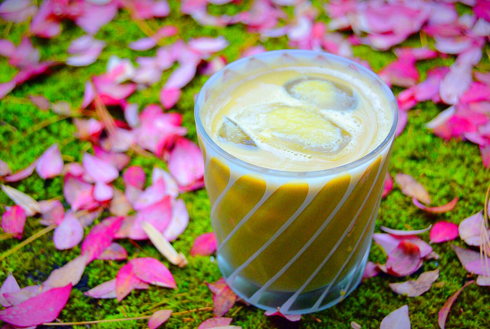 dulce de leche latte on a bed or pink leaves on moss