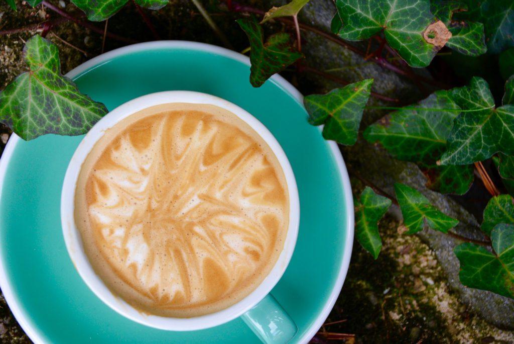 latte in a garden