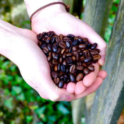 11 Sustainable Coffee Companies To Support on Earth Day